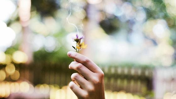 Рука, цветы, дым
