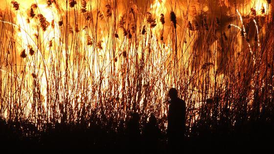 Человек на фоне сухой горящей травы