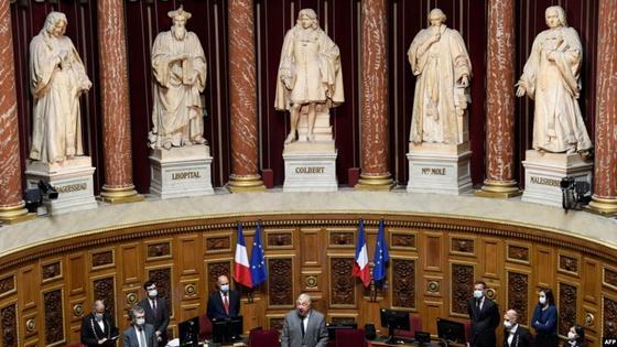 франция сенаты