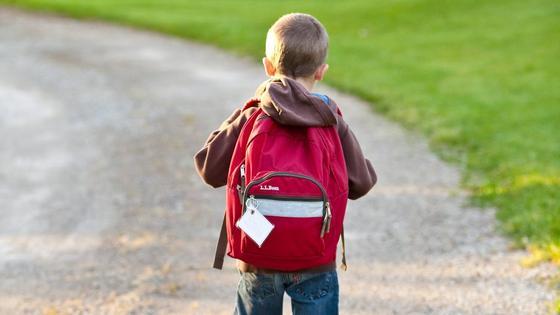 Мальчик с ранцем на спине идет в школу