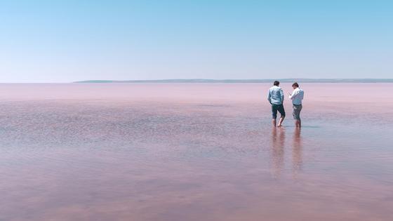 Двое мужчин стоят в воде розового озера