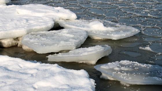 Льдины на водоеме