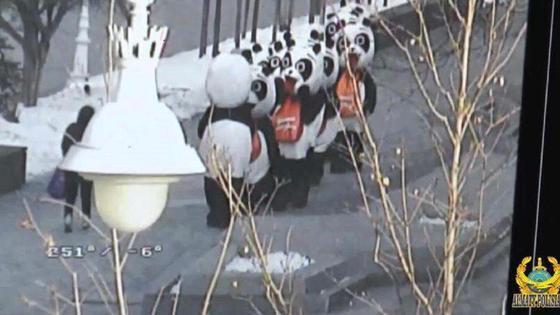 Арбатта жүрген пандалар