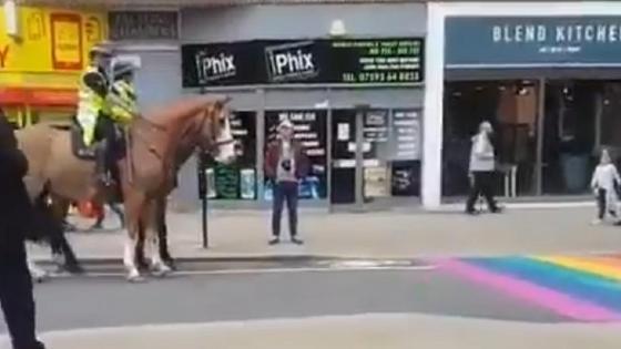Лошадь идет по асфальту