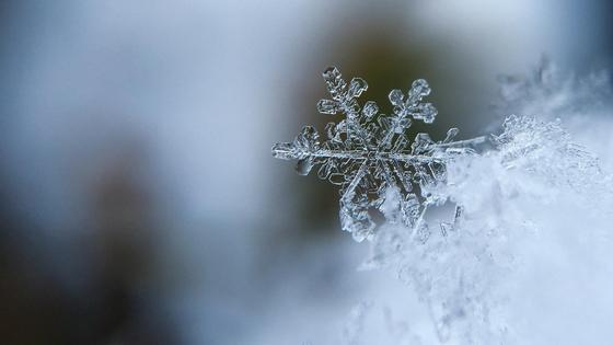 Снежинка на фоне снега