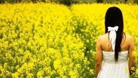 девушка в цветочном поле